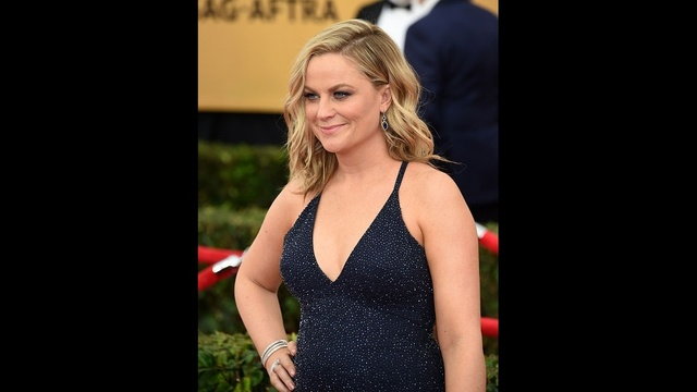 beautiful star arrivals - Amy Poehler_3131973404971057