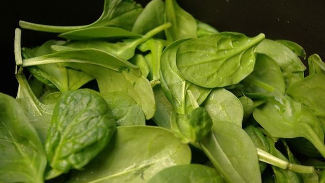 Cold Foods - Leafy Greens_2421899631221174