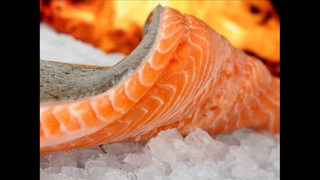 Cold Foods - Oily Fish_2421913478609949