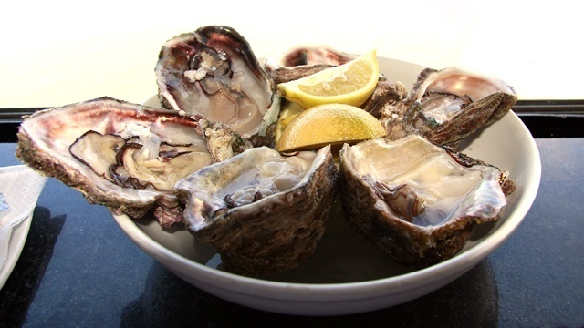 Cold Foods - Oysters_2421927231294551