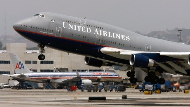 Scorpion falls out of overhead bin, stings passenger on United Airlines flight
