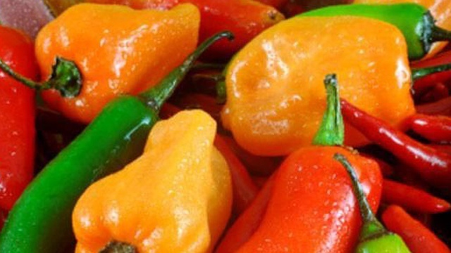 Spicy roasted red bell peppers