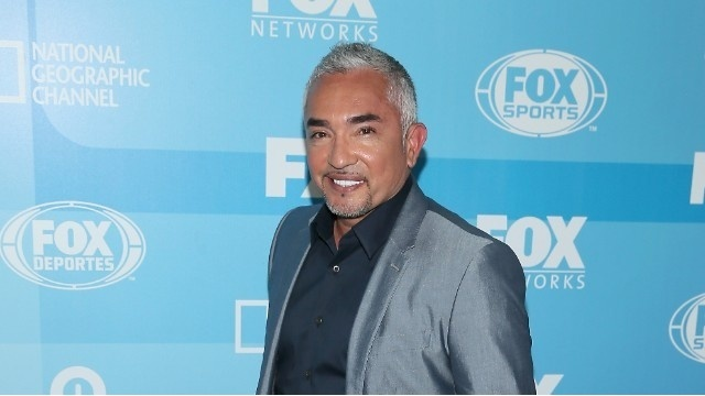 Amazon and Cesar Millan Present