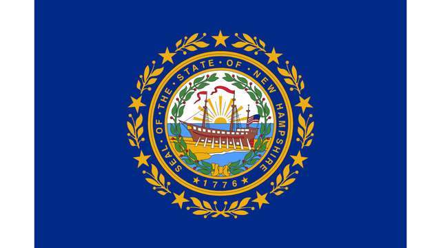New Hampshire state flag04270960
