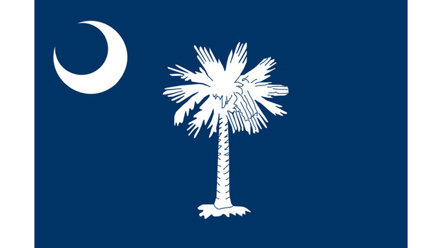 South Carolina state flag32285307
