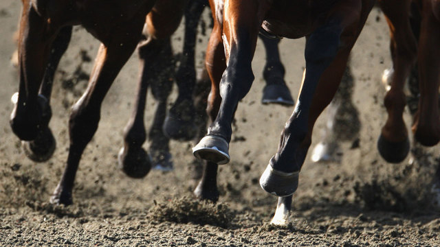 Derby Day festivities at Presque Isle Downs and Casino