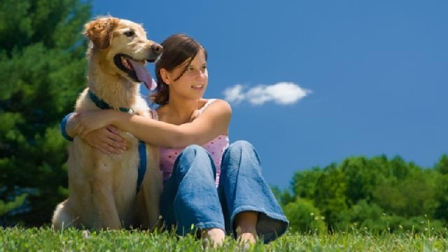 Pet therapy: Man's best friend as healer