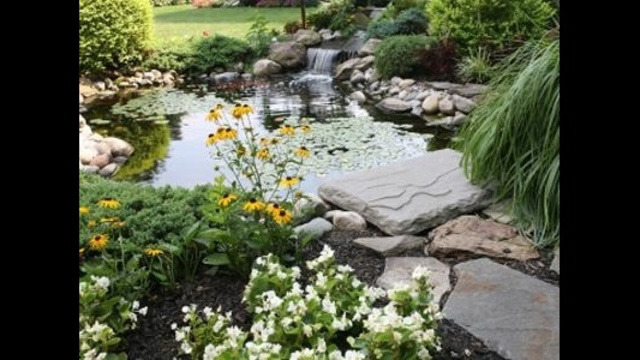 What's trending? Indoor water features