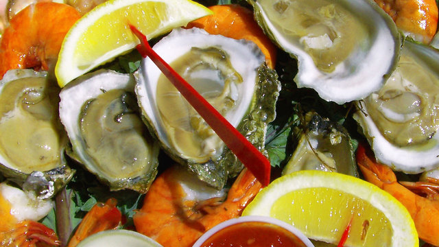 cold foods - Oysters 202034831