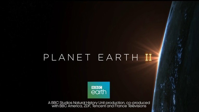 'Planet Earth II' weds climate message with jaw-dropping imagery
