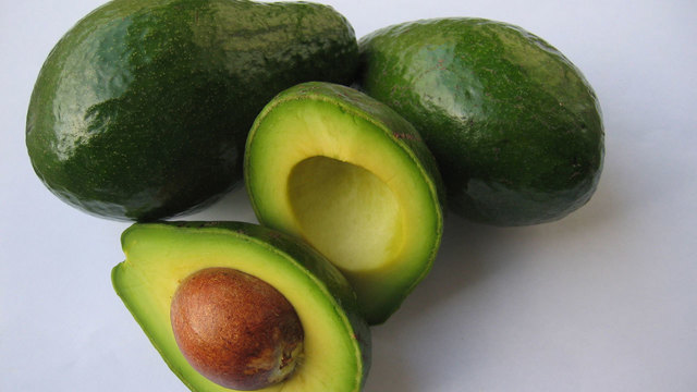 bad foods for dogs - avocado06943492