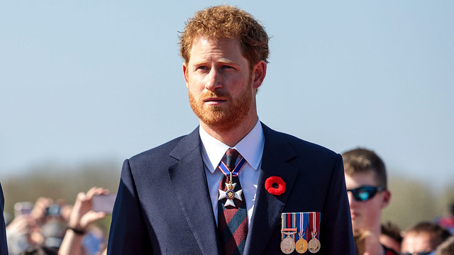 Rebel, soldier, activist: Prince Harry's not traditional royal