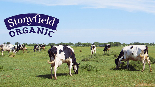 Danone is selling Stonyfield