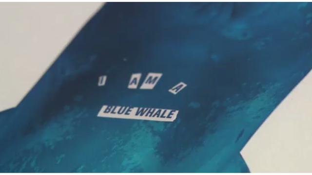 Family finds clues to suicide in 'blue whale' paintings