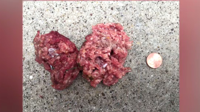 Glass-filled meatballs left for dogs in Dallas residents' yards