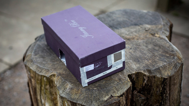 pinhole projector, viewer, total solar eclipse, camera obscura29206139