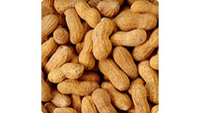 Peanut Protein in Dust May Raise Allergy Risk