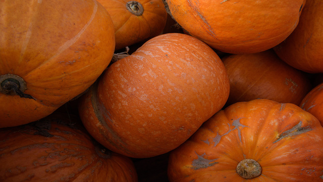 School evacuated due to pumpkin spice air freshener