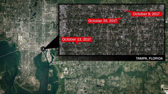 Tampa PD says 3 killings in 11 days are linked