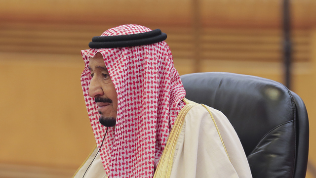 Saudi princes, ministers targeted in anti-corruption sweep