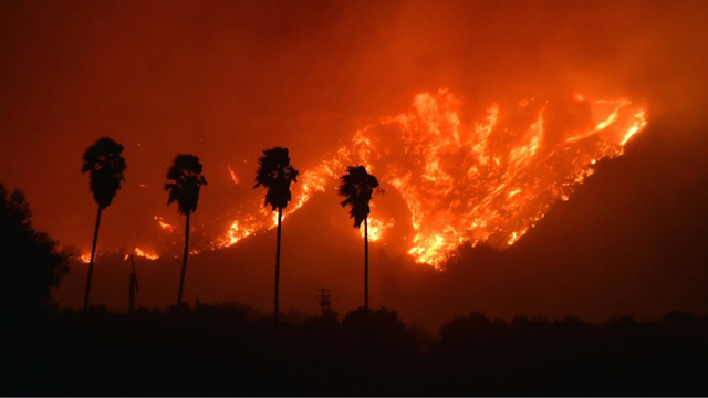 Thomas Fire in California Dec 5 Night Flames on Hill.jpg88113897