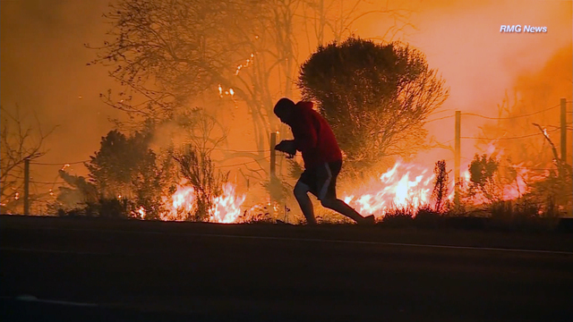 Man braves wildfires to save rabbit