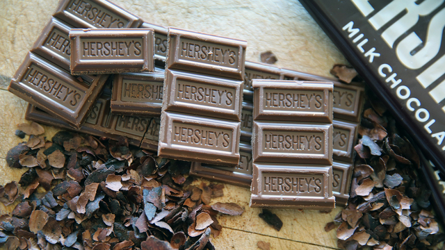 Could chocolate go extinct by 2050? Scientists say yes