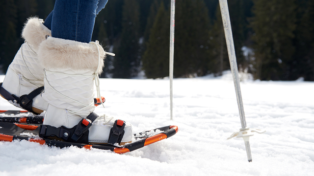 Winter activities to beat the winter blues