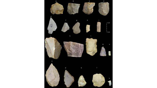 385000 years old Stone tools discovered 60 km off Chennai