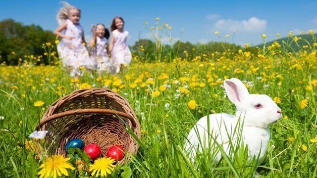 Viewmont Mall Welcomes Easter Bunny on March 10th