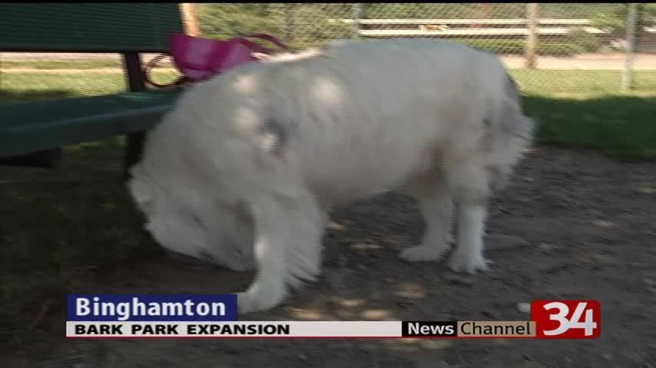 Cheri Lindsey Park in Binghamton expands dog park