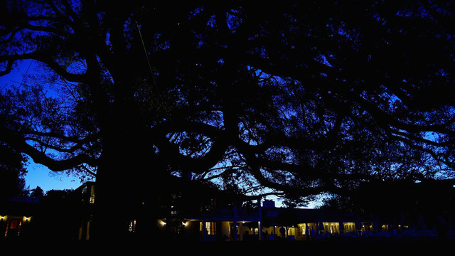 Augusta National clubhouse before dawn58258467