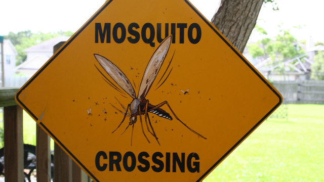 Mosquito control scheduled to reduce West Nile virus risk