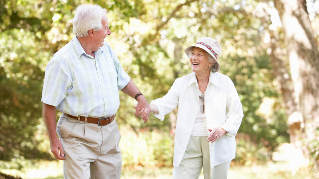 Aging and unsteady gait