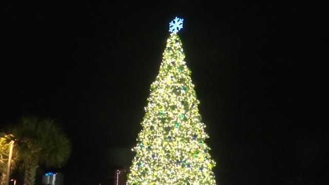 30 foot christmas tree lights the night in pcb