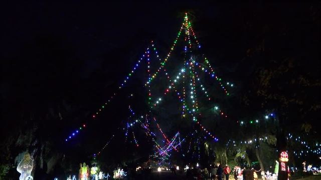 Big Crowds For Christmas Tree Laneu0027s First Walk Night   YOURCENTRALVALLEY