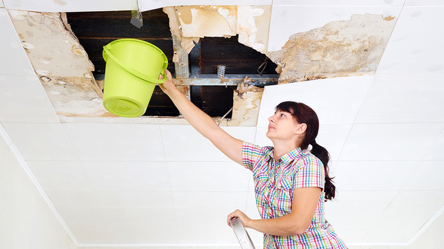What to do if you find a leak in your roof