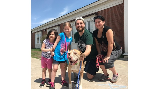 Family reunited with lost dog found 4 years later in Ohio