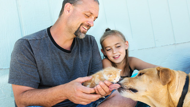 5 things to know to help your pet live a healthier life