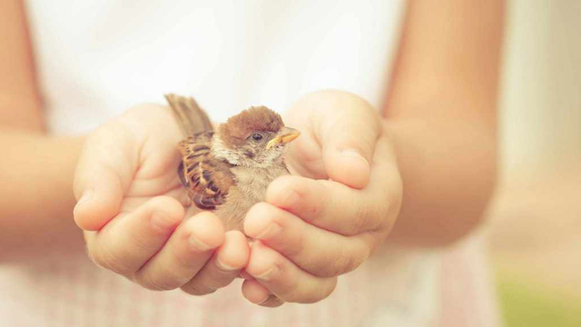 Share kindness to be happier and healthier